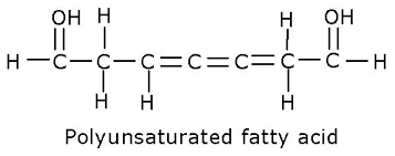 poly fat bonds.png