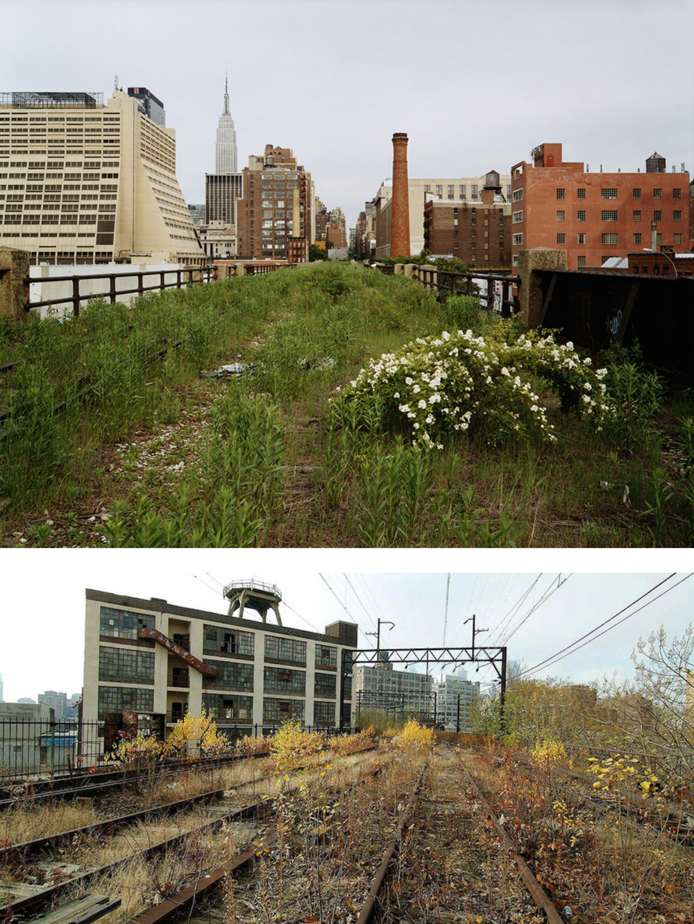 HOW GREAT WAS THE HIGH LINE? It could also have been left alone or taken down.