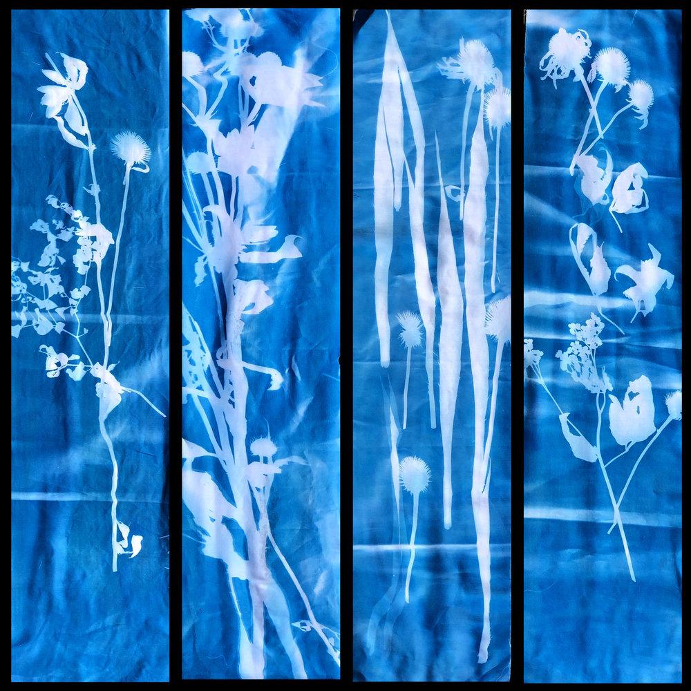 Cyanotypes from Kioto Aoki & Jan Tichy's Sun Printing Workshop!