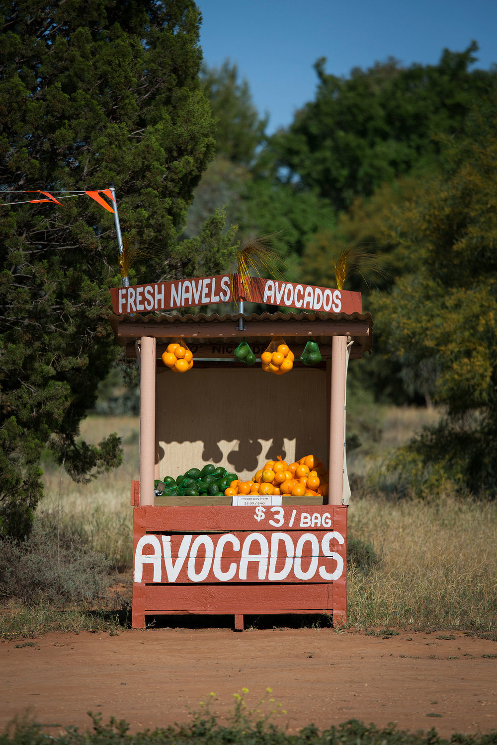 Roadside stall selling avocados and navel oranges, Merbein, VIC.
