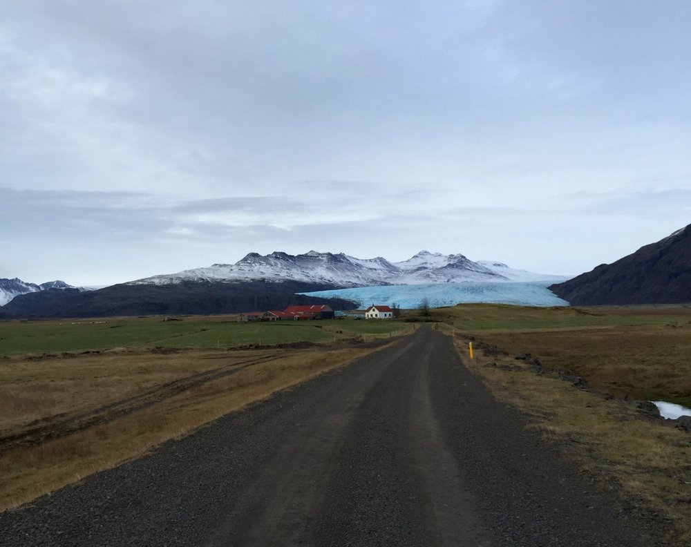 Many farms on the south coast of Iceland have glaciers in their back pastures. Photo: M Jackson