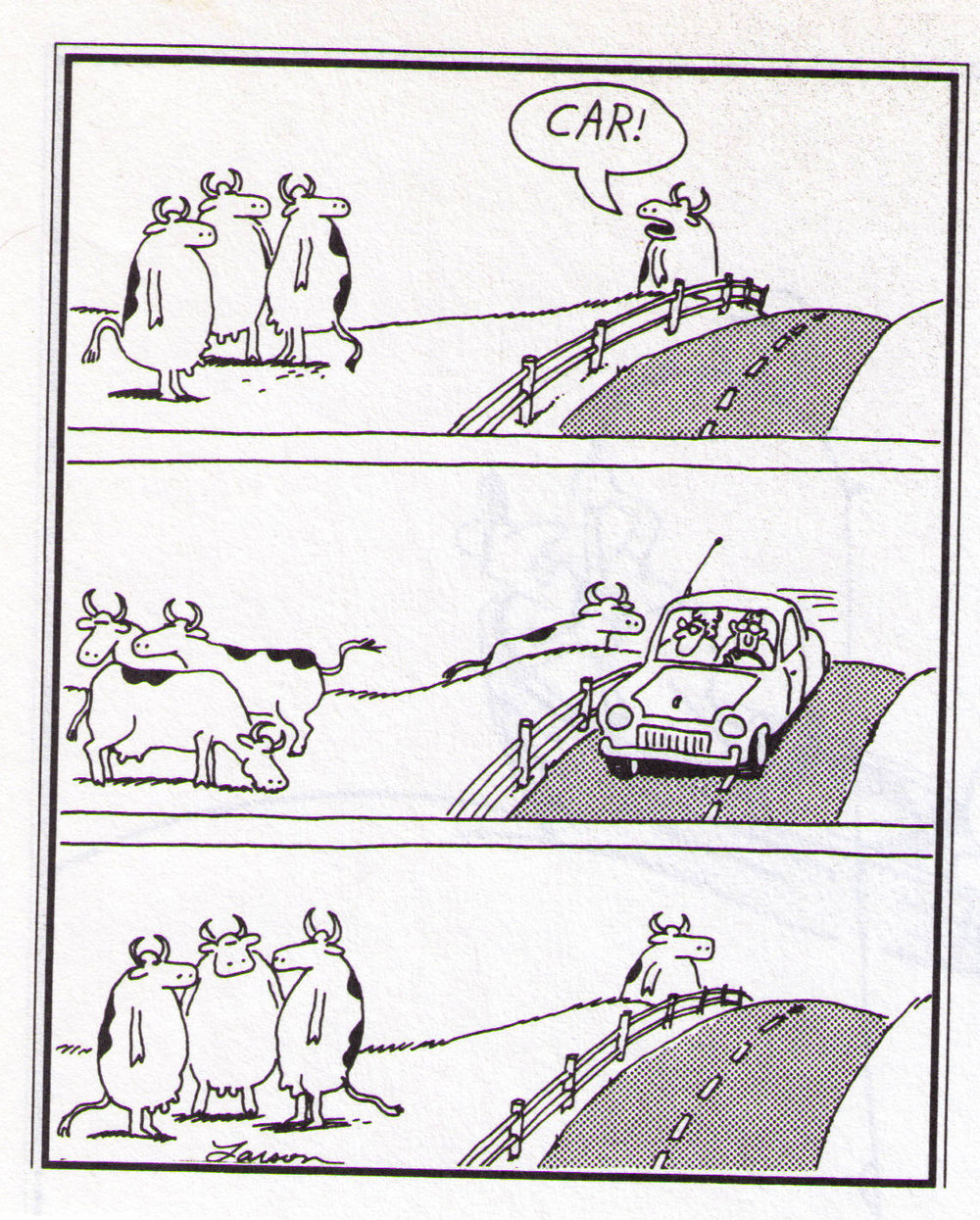 Gary Larson's  The Far Side.