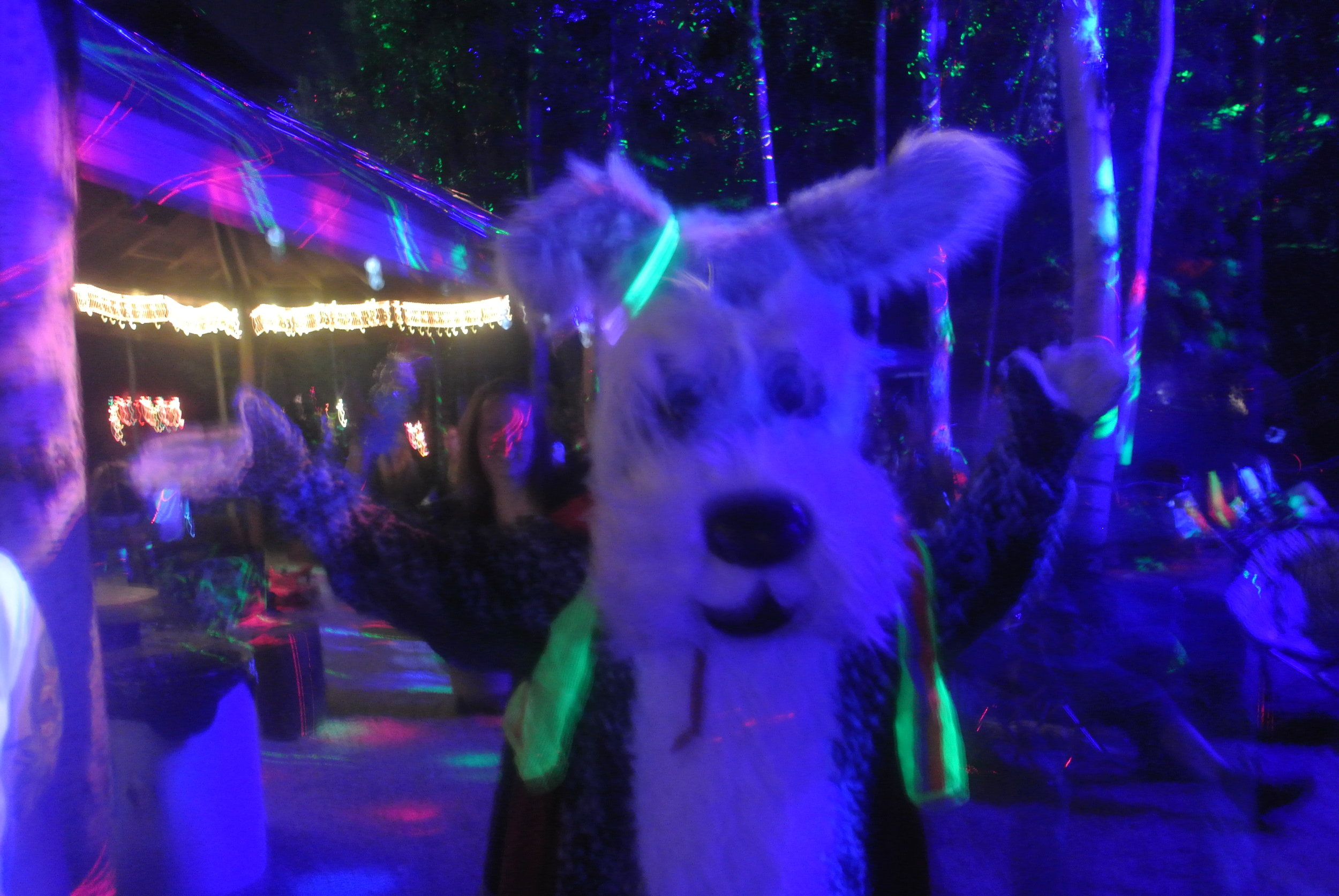 SPCA festival mascot