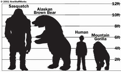 bigfoot-size.jpg