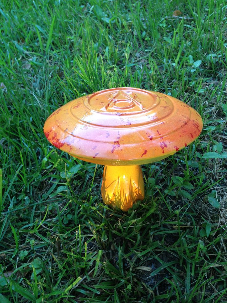 - You just never know WHAT you're going to get, or worse yet, forget! take care of yourselves out there int he big wide world. This week, perhaps take the old hubcap out of the closet and make a mushroom lawn ornament.