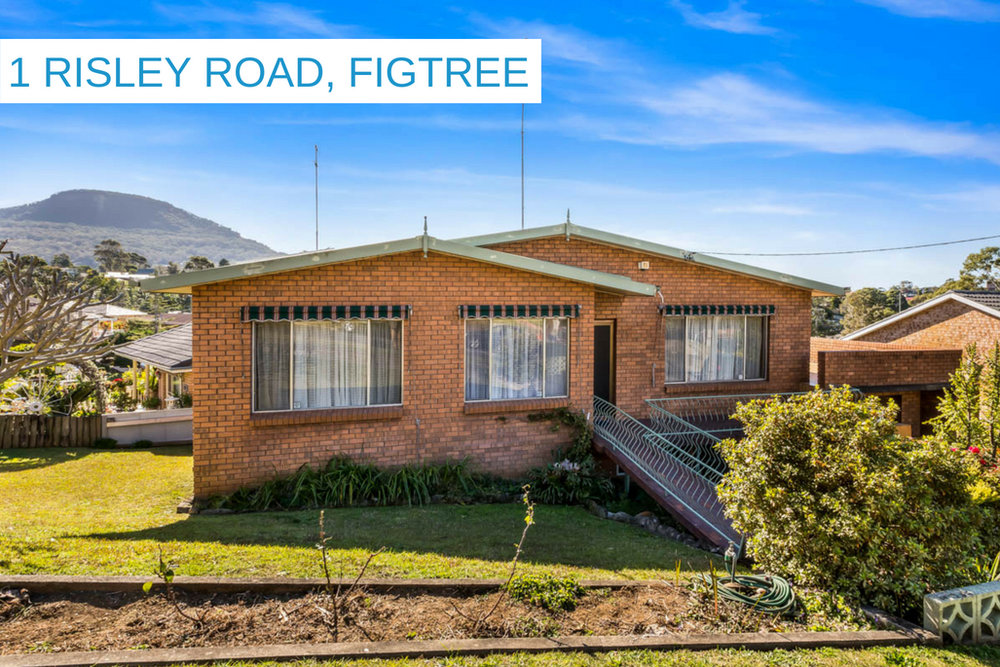 1 RISLEY ROAD, FIGTREE.jpg