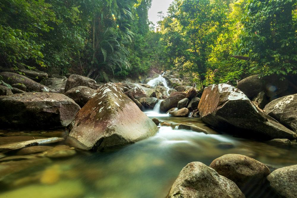 Gunung Gading National Park-1.jpg