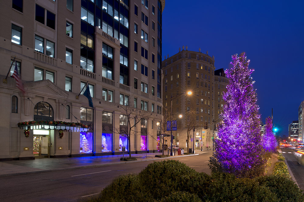 LED lighting designed by the Golden Triangle BID changes color throughout the night, enlivening the median at night.