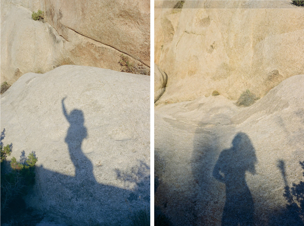 self-diptych-joshua-tree-015_v3.jpg