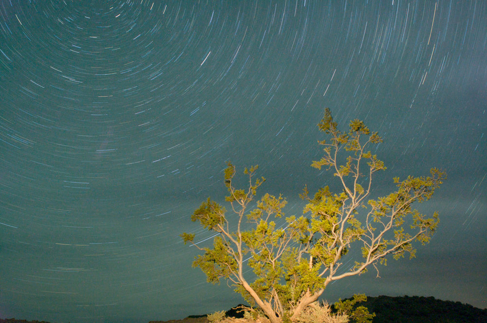This was taken in Death Valley, I light painted the tree. I was trying to capture some meteors in the shot and failed. This was a 29 minute single exposure. 28mm, f5.6, 1759 seconds, 400 iso.