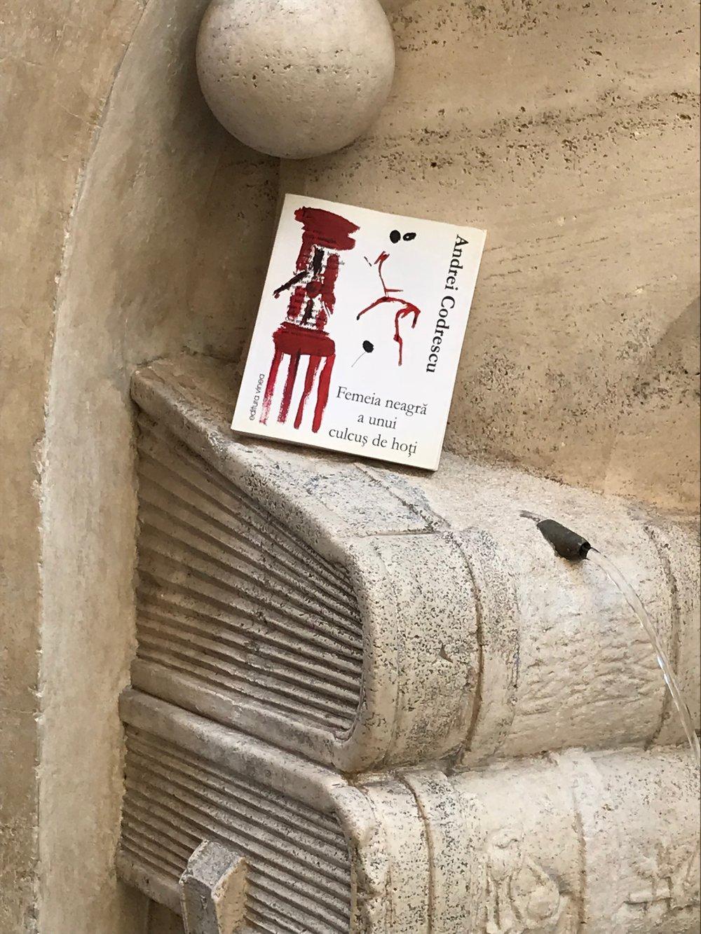fontana de a sapienza_w Codrescu book_TOP.JPG