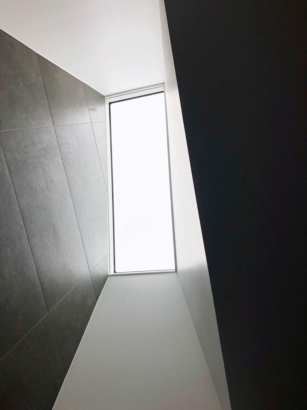 FERN-AVE_Skylight.jpg