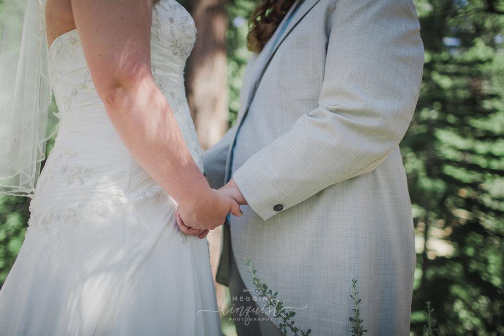 same-sex-wedding-reno-lake-tahoe-wedding-photographer-11.jpg