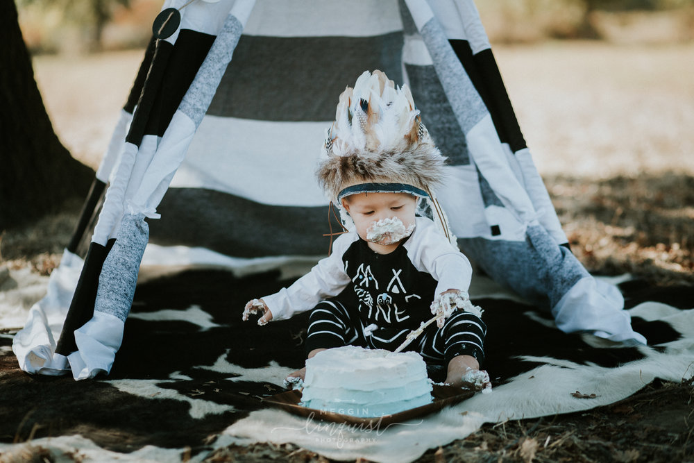 indian-themed-cake-smash-reno-lake-tahoe-family-photographer-29.jpg