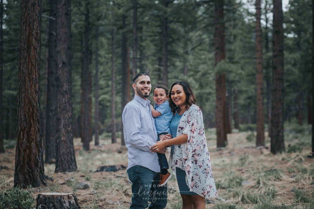 galena-spring-maternity-session-reno-lake-tahoe-photographer-1.jpg