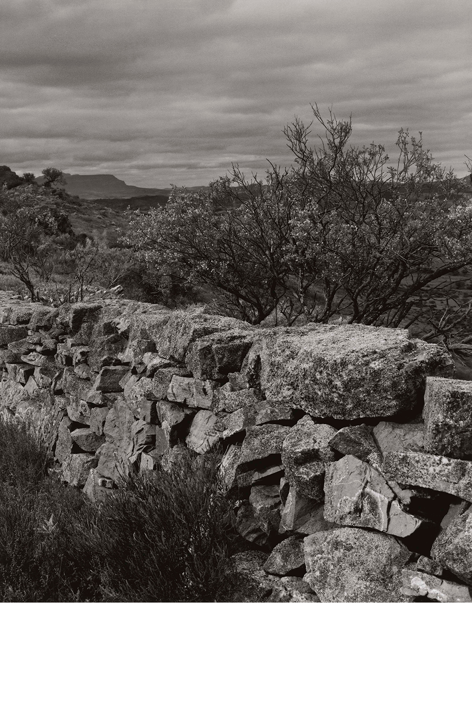 Dry-stone Wall and Rawnsley Bluff