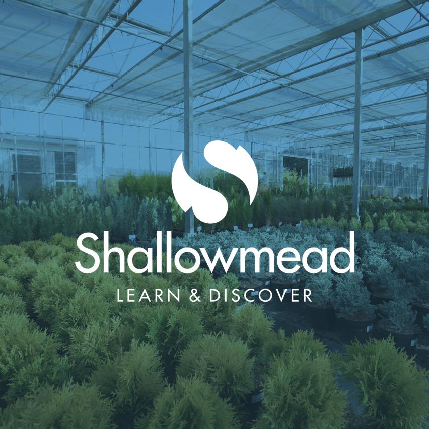 shallowmead.jpg