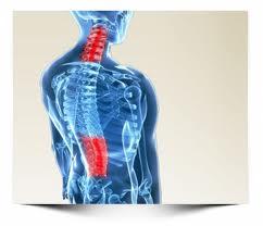 Roseville Family Chiropractor Neck Back Pain.jpg
