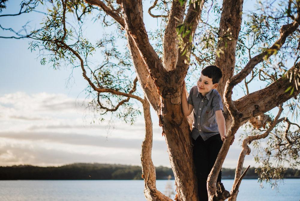 Boy in a tree at Lake Samsonvale North of Brisbane