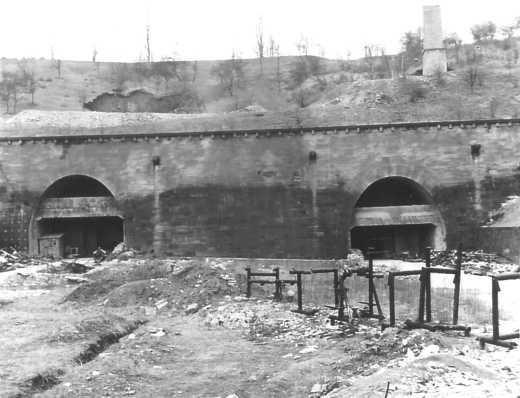 6. Leonberg camp