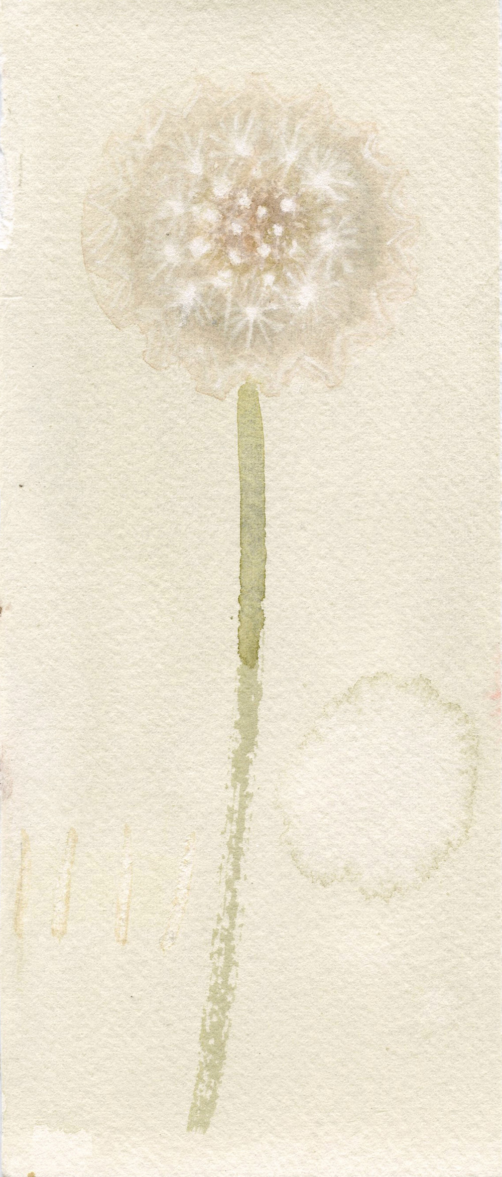 a wish   watercolour  11x21cm