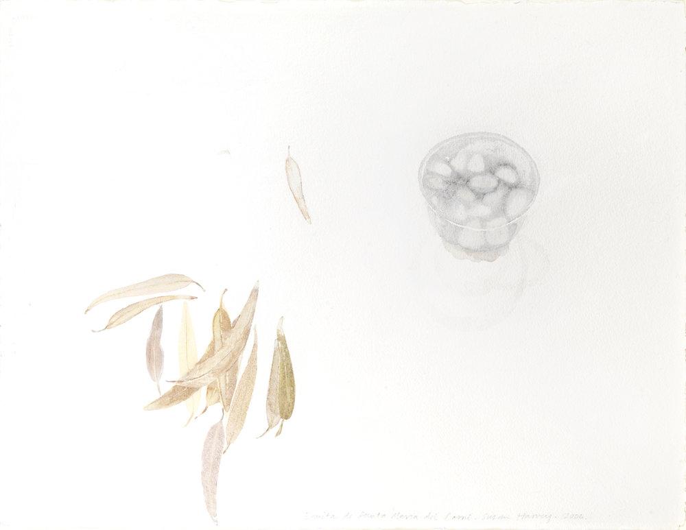 ermita de santa maria del cami   watercolour  56x76cm