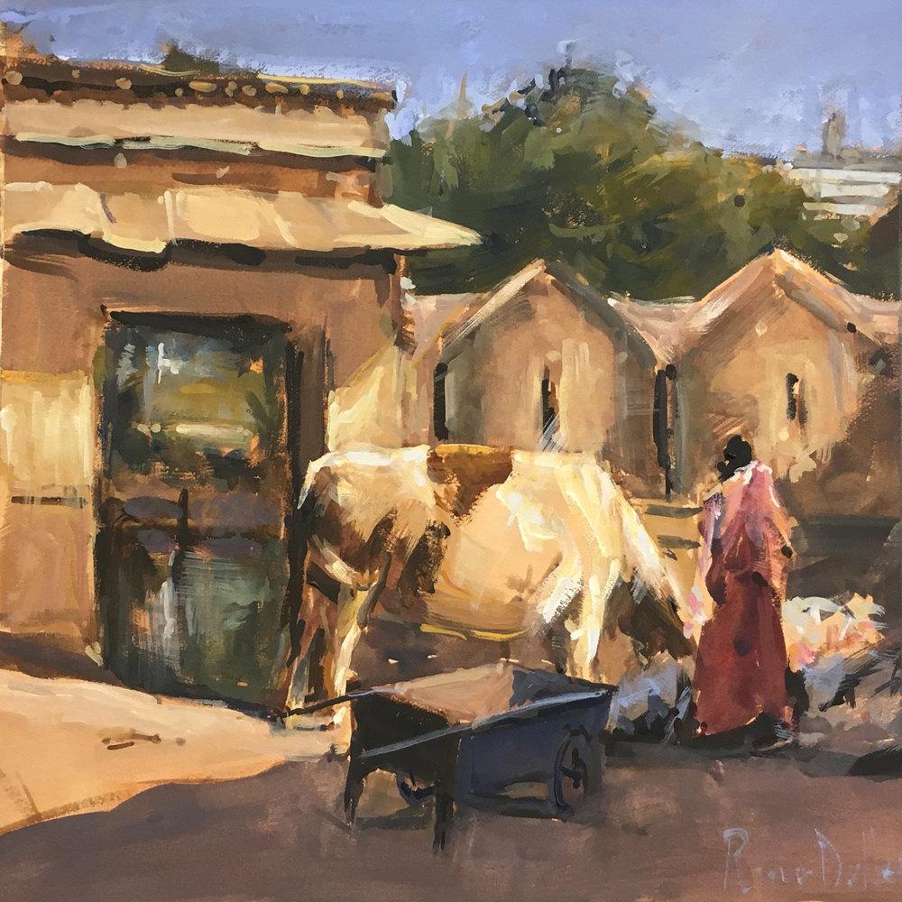 Sacred Cow Udaipur