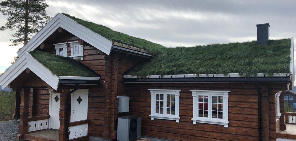 Här är taket i oktober samma år. Nittedals Taktorv® levereras med gräsfrön och gödning färdig tillsatt från fabriken och torven har en mycket bra växtkraft som snabbt ger ett grönt tak.