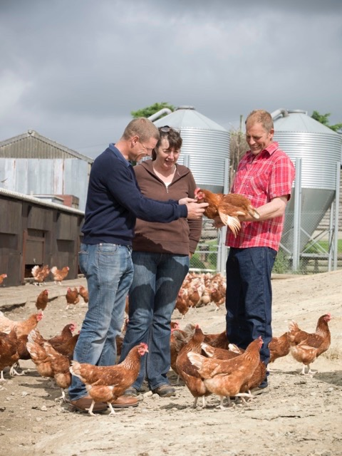 hfandp_feed_pullet_suppliers_13.jpg