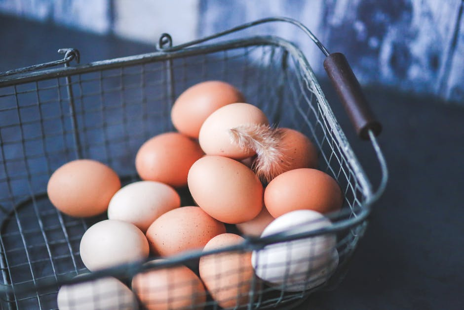 Growth of the free range egg market