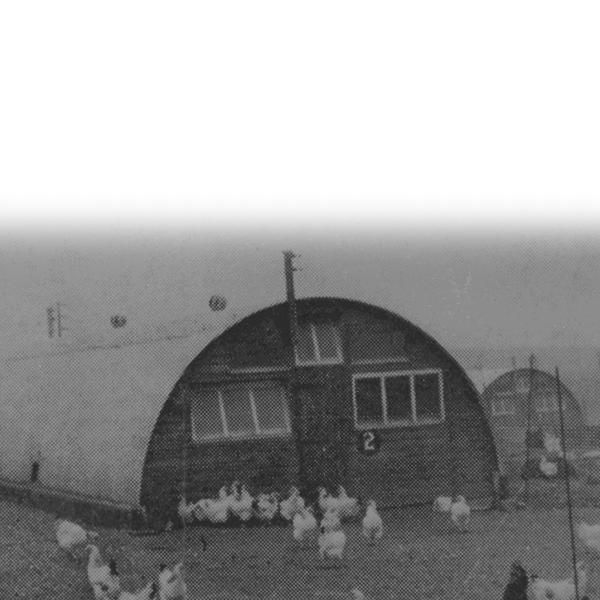 ....Our History..Ein Hanes.... - ....Humphrey Feeds & Pullets has an 85-year history dedicated to poultry. It was established by John Humphrey in 1932...Mae gan gwmni Humphrey Feeds & Pullets hanes 85 mlynedd o weithio'n benodol â dofednod. Cafodd ei sefydlu gan John Humphrey ym 1932.....