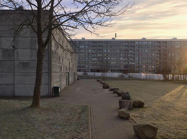 Brisk morning! / Lysfyldt morgen, til marven kold! #modernism #architecture #brutalism #morning #frost #morgen #aarhus #brabrand #johannesvjensen