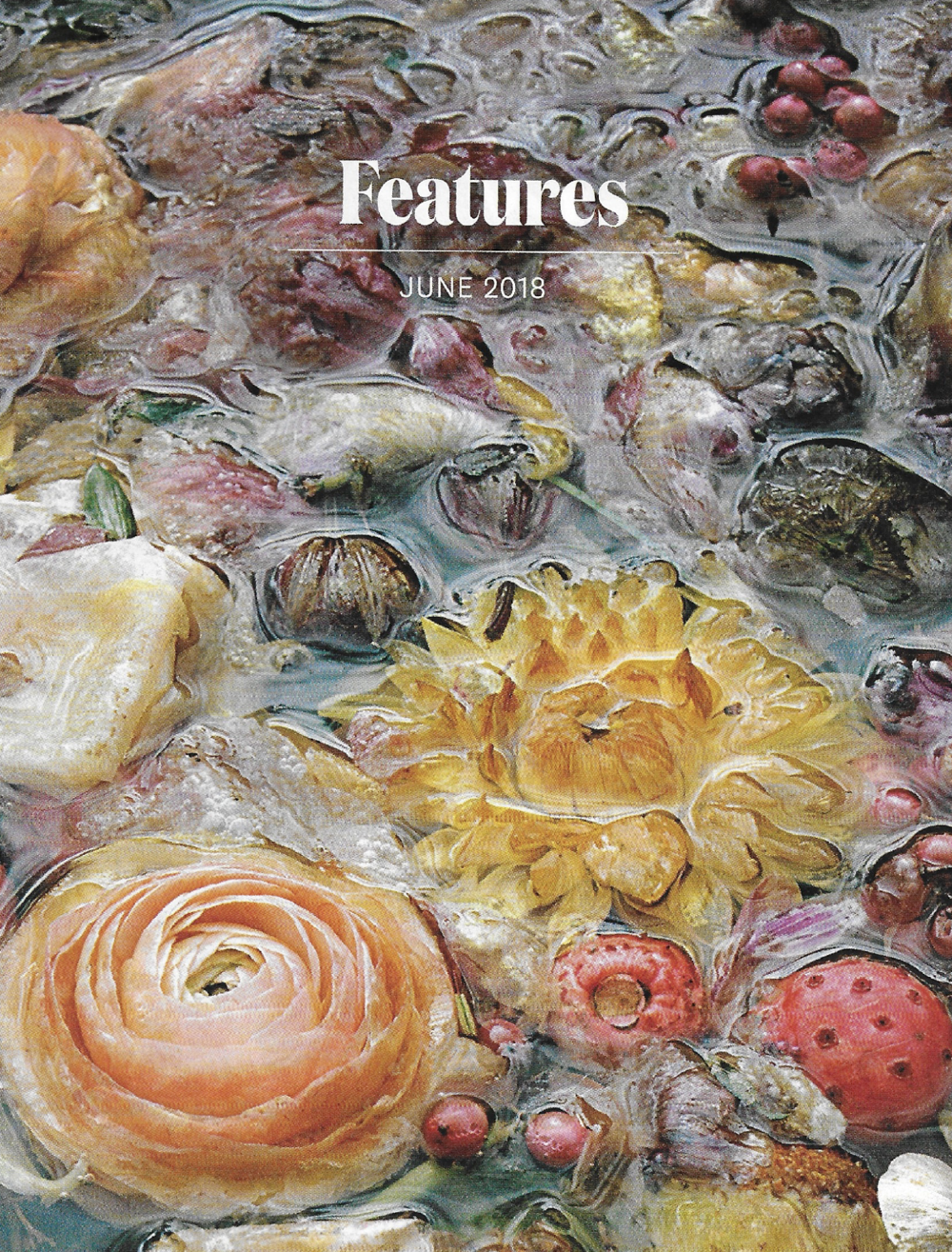 The Art IssueDownEast -