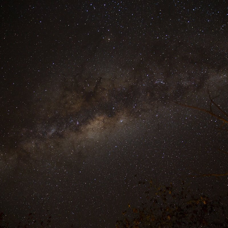 The Milky Way bulge rises above us at Kruger National Park, South Africa, which was completely unexpected. #keepitwild #bigcatsplayball (at Kruger National Park)