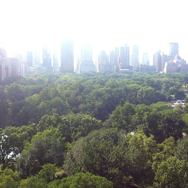 Nice view of #centralpark (at Central Park)