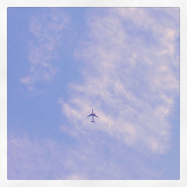 Fly away. Instagram photo taken from Hoboken