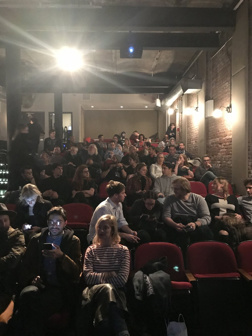 The audience at the 11/16 screening of Maddie at the Wythe Hotel Cinema