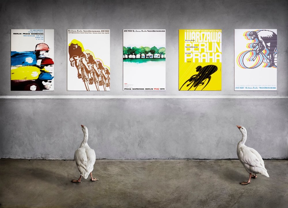 The goose shoot. With posters of the Peace Race curated by Herbie Sykes