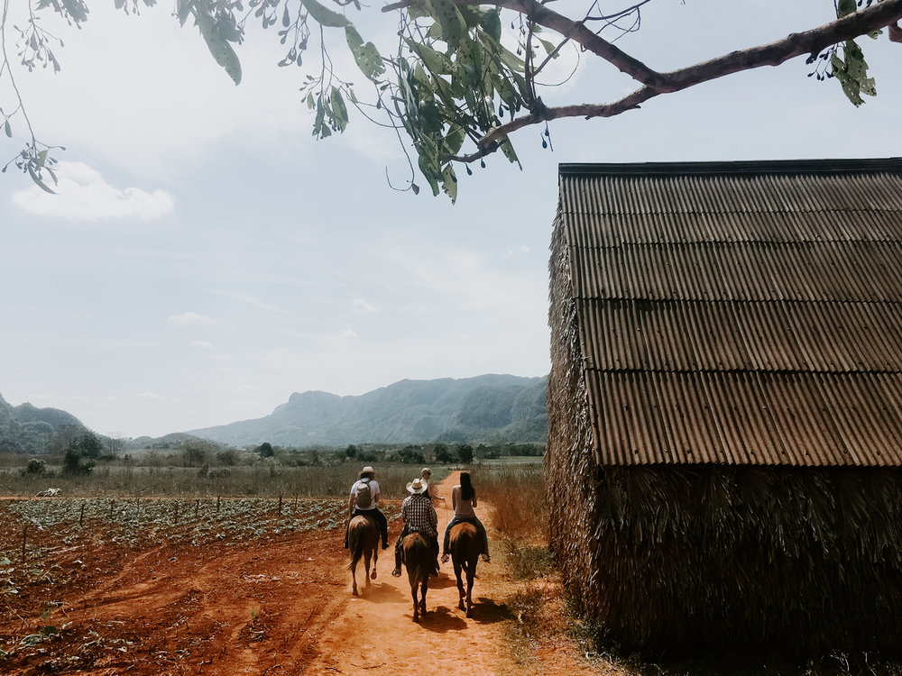 horseback riding in vinales national park. cuba travel.