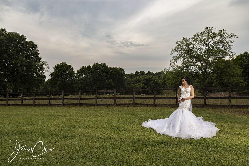 Fancois & Zane Wedding (8).jpg