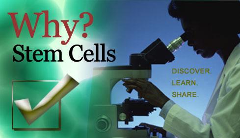 Why_Stem_Cells.jpg