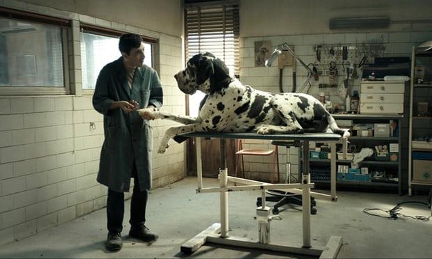 dogman .jpg