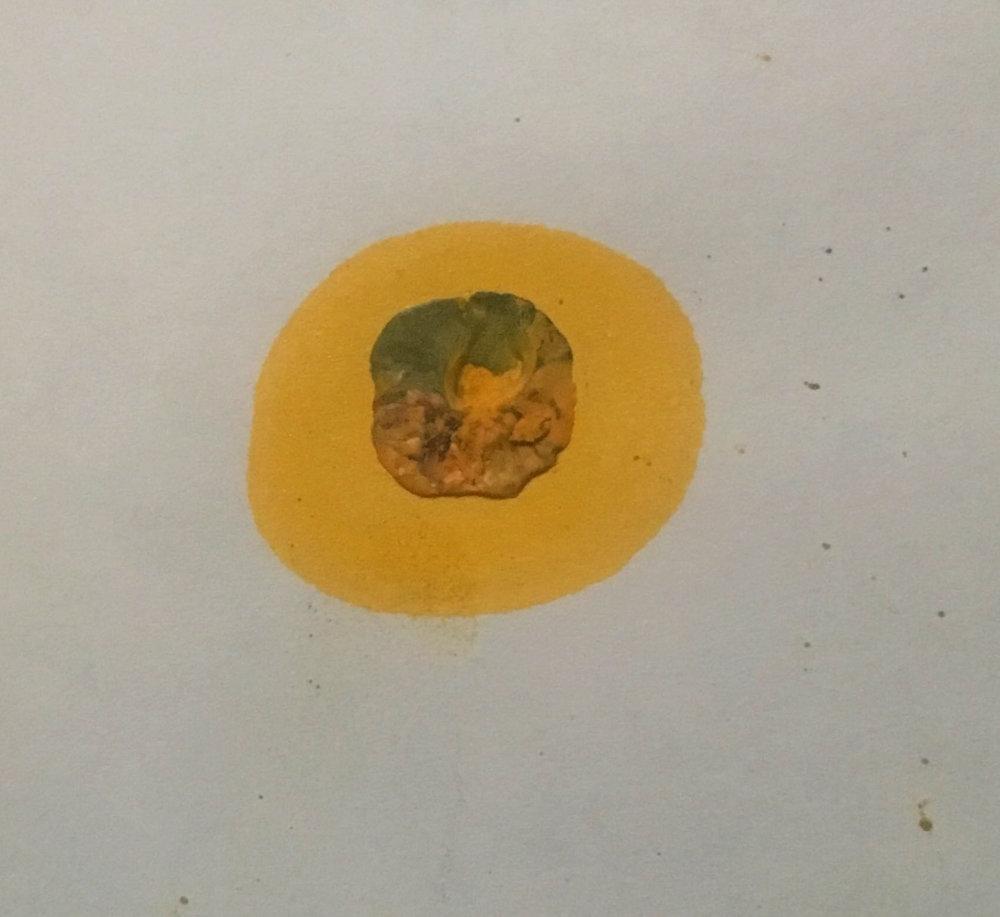 yellow dot.jpg
