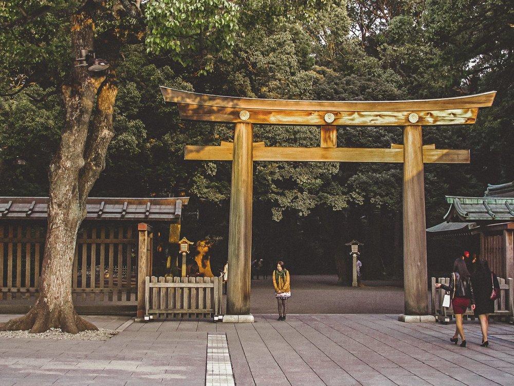 Visiter tokyo une semaine guide par jour par quartier meiji jungu yoyogi park japon asie blog voyage photographie