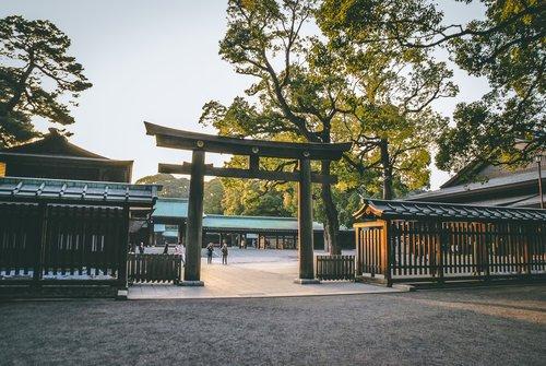 Visiter tokyo une semaine guide par jour par quartier meiji jingu sanctuaire torii japon asie blog voyage photographie