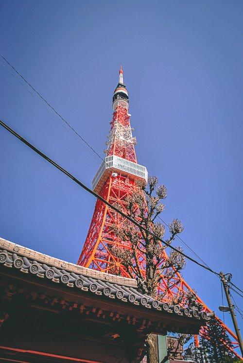 Visiter tokyo une semaine guide par jour par quartier tour de tokyo japon asie blog voyage photographie