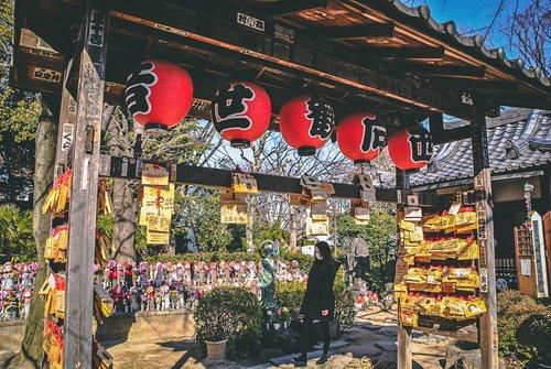 Visiter tokyo une semaine guide par jour par quartier zojoji sanctuaire torii japon asie blog voyage photographie