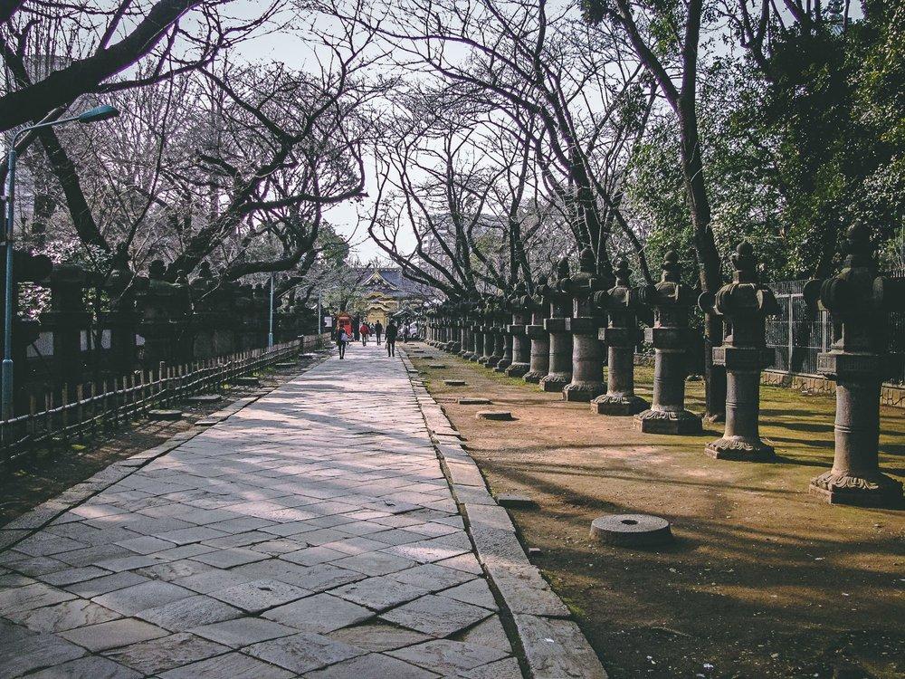 visiter tokyo une semaine guide par jour par quartier parc ueno sanctuaire japon asie blog voyage photographie