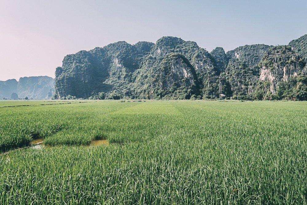 tam coc vietnam baie halong terrestre rizière asie blog vietnam