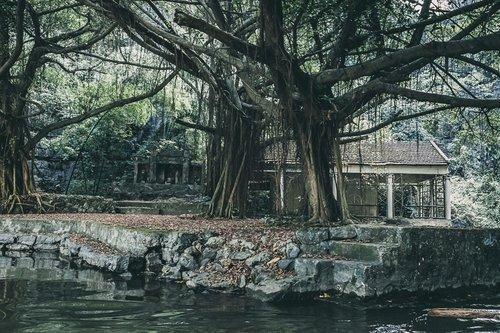 tam coc vietnam baie halong terrestre hanoi vietnam asie blog voyage photographie